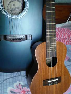 Signature guiter and ukulele (signature)