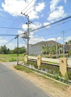 Kode : TS 309 #Tanah Sawah di Sewakan Mangku Jalan Utama Depok Sleman