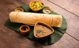 i want job South Indian breakfast chef