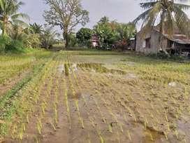 Tanah strategis untuk investasi