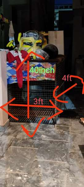 Adult Dog cage for sale heavy iron