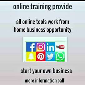 Work from home as wellness coach