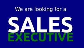 Sales executives needed for toys company