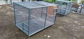 Fresh birds cage