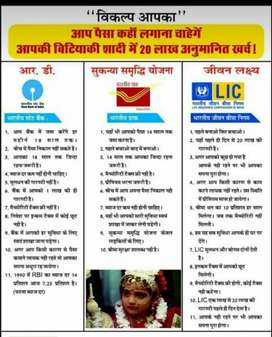 Sell insurance on govt company