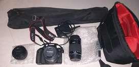 Canon eos 77d for seal