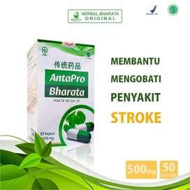 Obat Stroke Herbal Antapro Bharata