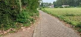 Tanah murah cukup luas dan potensial di depan kantor Kecamatan