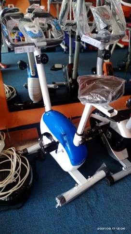 Magnetic bike 8219