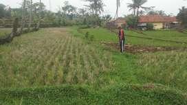 Dijual Tanah Sawah Dekat Jalan Raya Nasional Jln. Raya Bandung Tasik