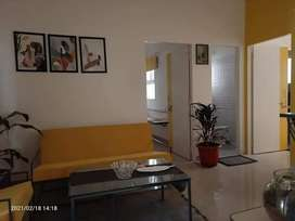 1bhk flat for sale vaishali extension