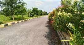 Open plots at sangareedy