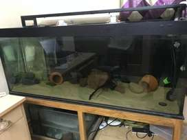 5ft aquarium with teakwood table for sale