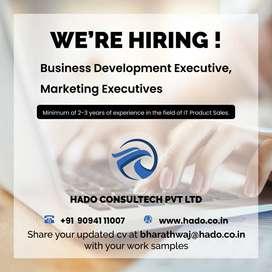 IT Business Development Executive/Marketing Executive