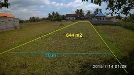Jual Sawah Rp1.749.999/m, dekat pusat ekonomi Pengasih dan Wates