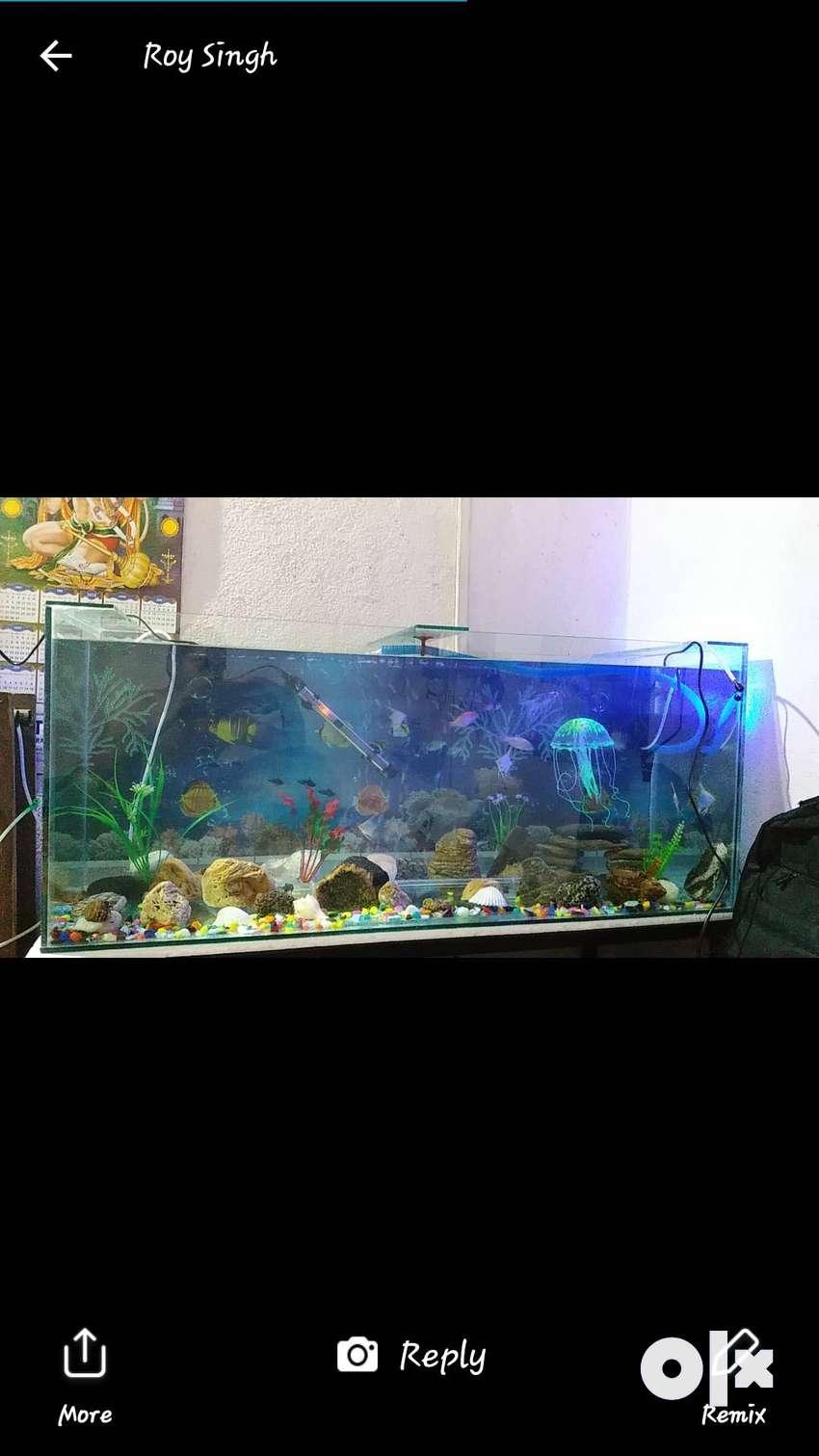 Aquarium tank 8 mm glass & 48/18 inch size 0