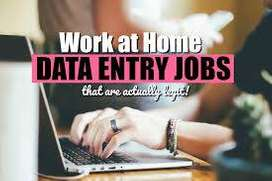 DATA ENTRY (WORK FROM HOME  )