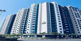 New 1 Bhk flat available for RENT in GARDEN AVENUE K