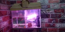 Aquarium for urgent sale