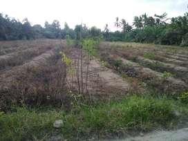 Tanah/ lahan kosong