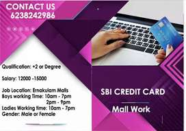 Mall works credit card sales