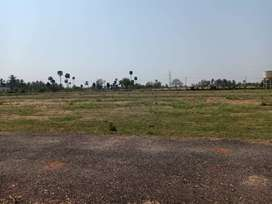 Gated Community Lands available in sathy road - kovilpalayam