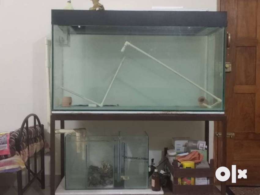 Aquarium 4 feet