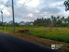 Dijual Tanah area Keramas, Blahbatuh Gianyar Bali
