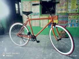 sepeda fixie dewasa