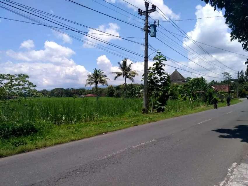 Disewakan Tanah Luas di Jl Kebon Agung Sleman