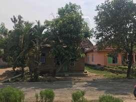 Dijual tanah dan 2 bangunan di tambahrejo, pringsewu. 451 m2