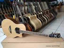 Gitar akustik apx prenner LC