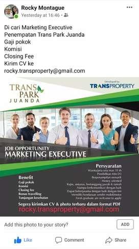 Di Cari Marketing Executive untuk Trans Park Juanda