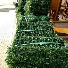 Diromosikan jual  - daun pelastik untuk dinding daun dolar