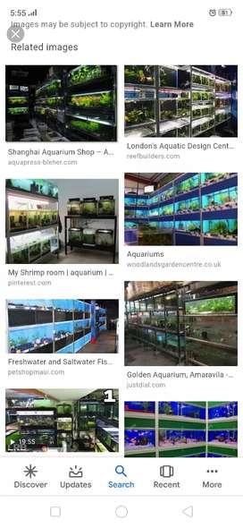 Want girl to work in aquarium shop