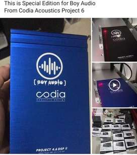 Paket Audio Dsp Prosesor built in Amplifier | Boy Audio