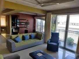 2446 sq ft 3 Bhk Duplex Furnished flat Kadavanthara