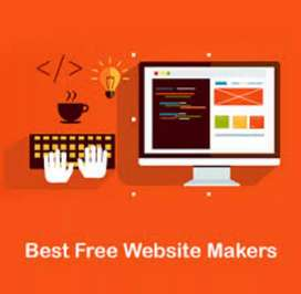 Any profesional for making a website