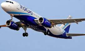 Urgent hiring on ground staff in Indore