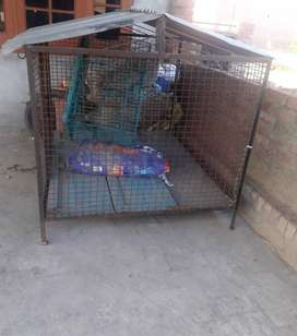 Gray Steel Dog House At Pet Shop & Farm Ludhiana Chandigarh