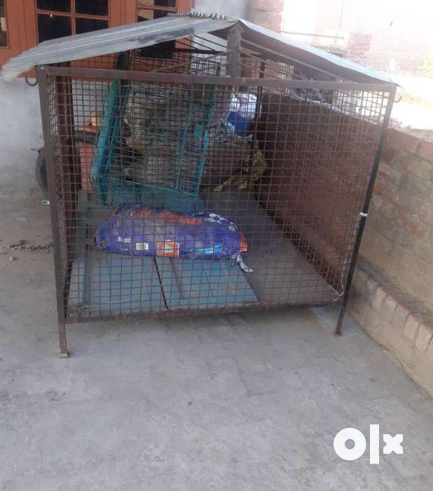 Gray Steel Dog House At Pet Shop & Farm Ludhiana Chandigarh 0