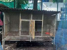 Cage for hen