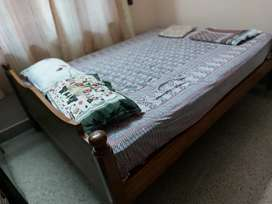 Double cot Queen size with Mattress