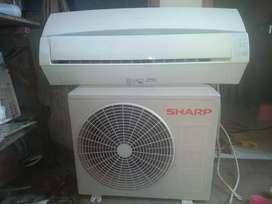 Ac sharp 1/2 pk