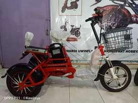 Sepeda Listrik SELIS Trike Roda Tiga Bergaransi