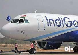 Vacancies  at Airport Urgent hiring