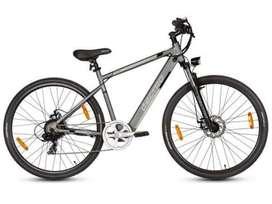 Lectro TownMaster.  E-Bike