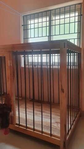 Indoor dog home