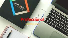 We are developing professional websites / Video AD making