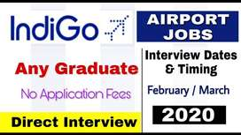 Urgent hiring airport security officer, safety